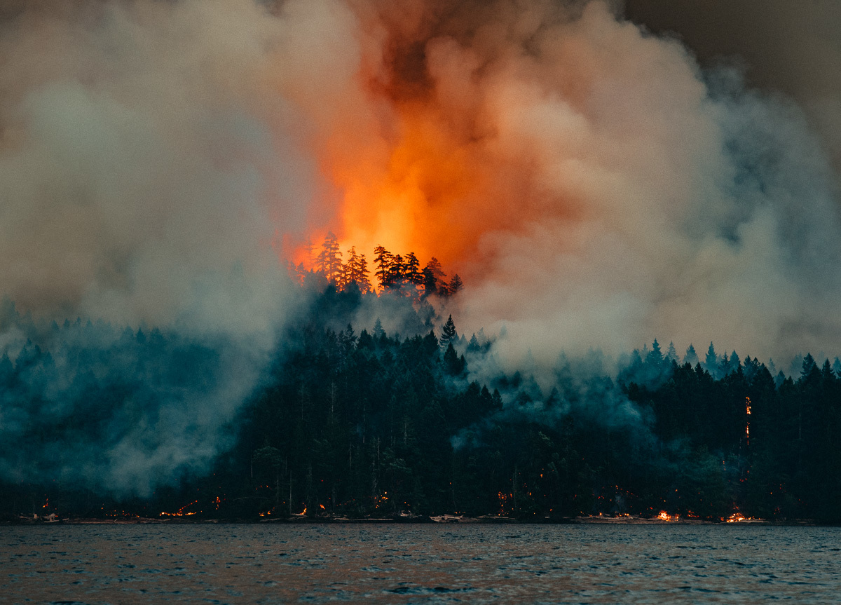 circa1983-forest-fire-10