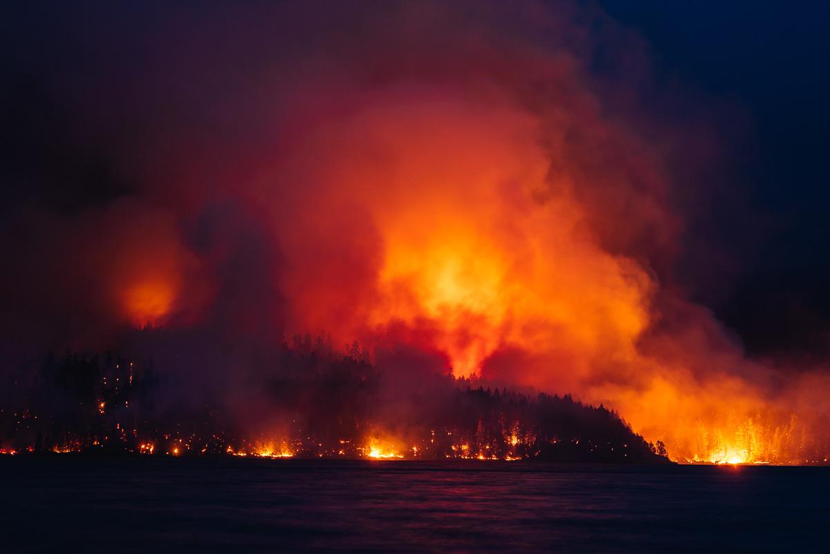 circa1983-forest-fire-12