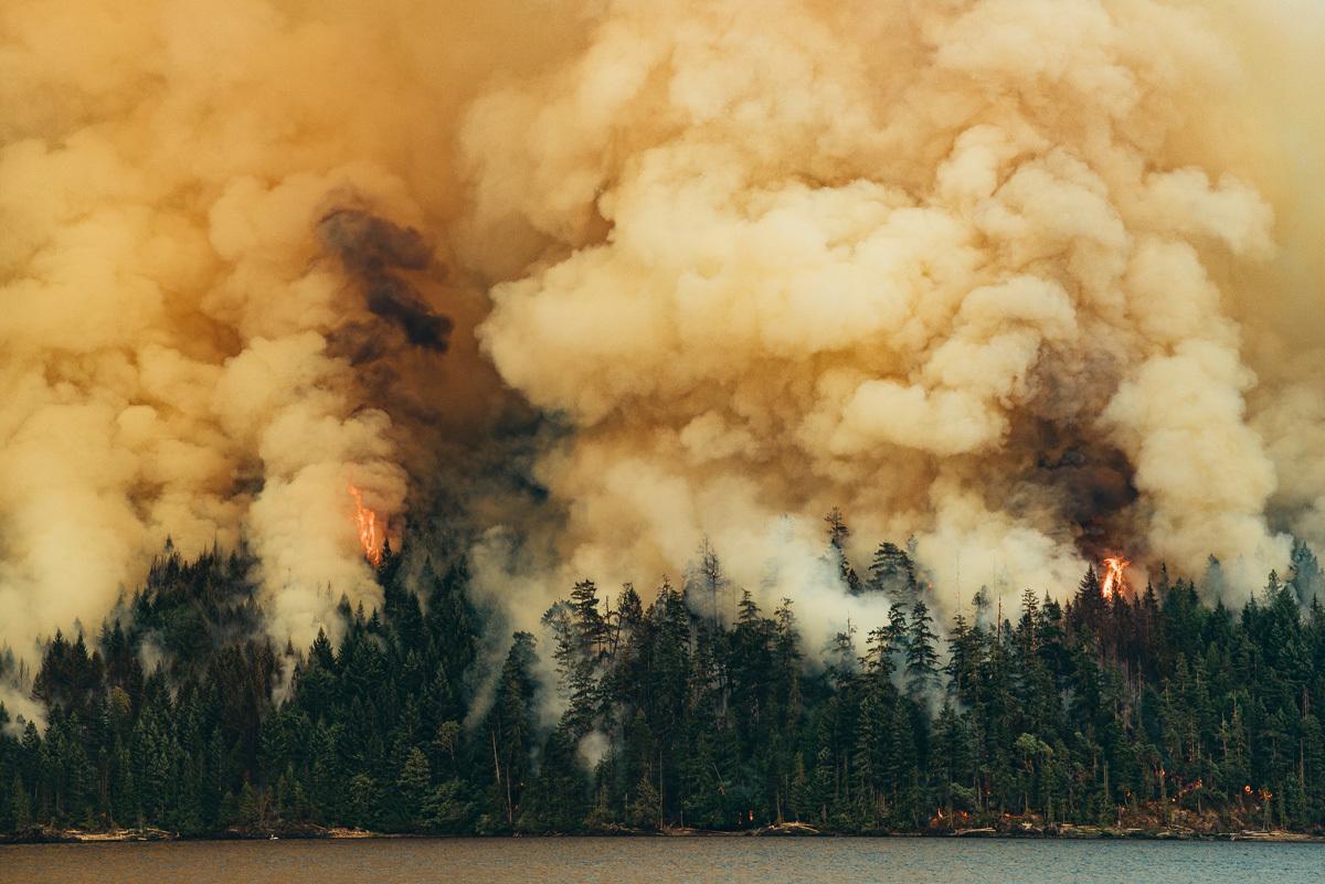 circa1983-forest-fire-72