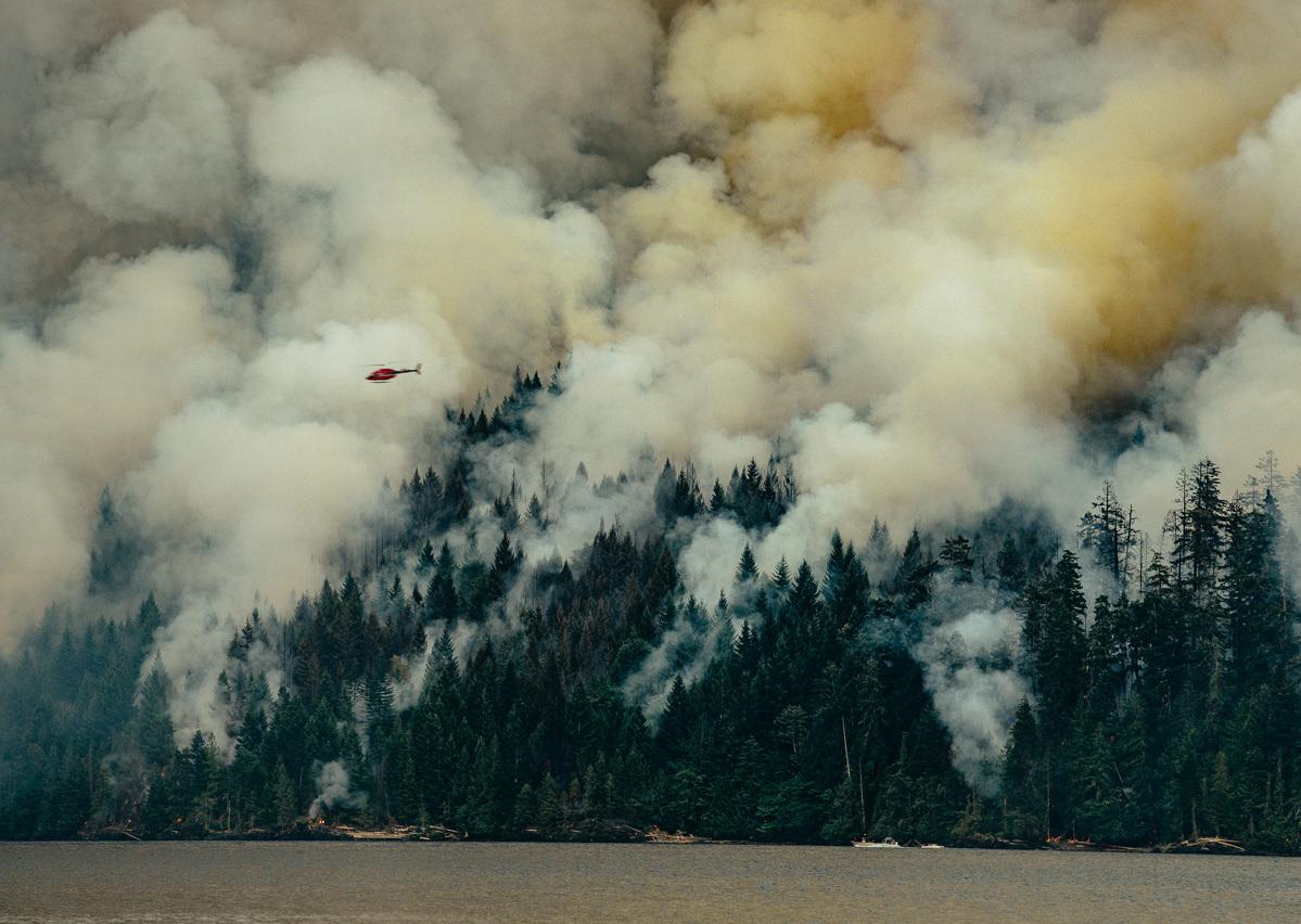 circa1983-forest-fire-9